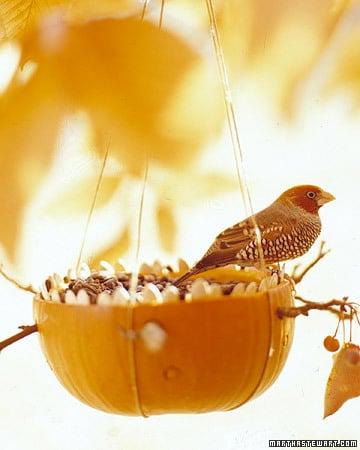 Kid friendly fall decorating ideas pumpkin bird feader