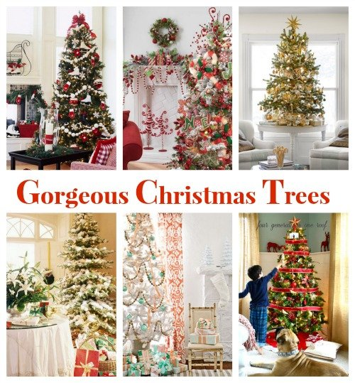 gorgeous christmas tree theme ideas