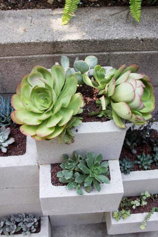 cinder block outdoor planter