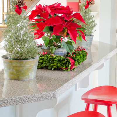 Decorating with Christmas Poinsettia's