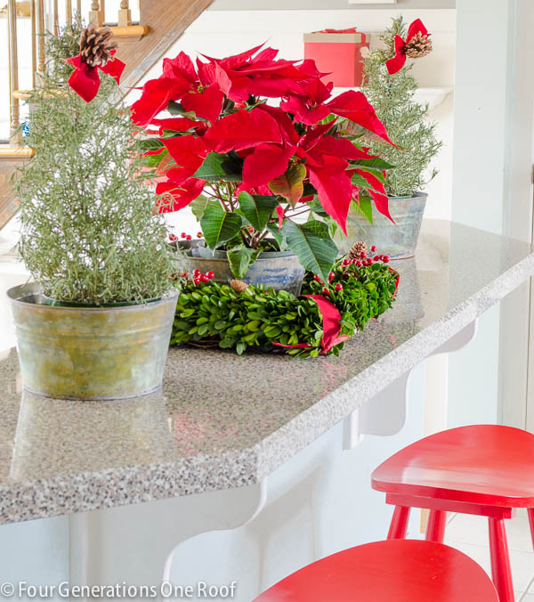 Christmas Home Tour 2013-8