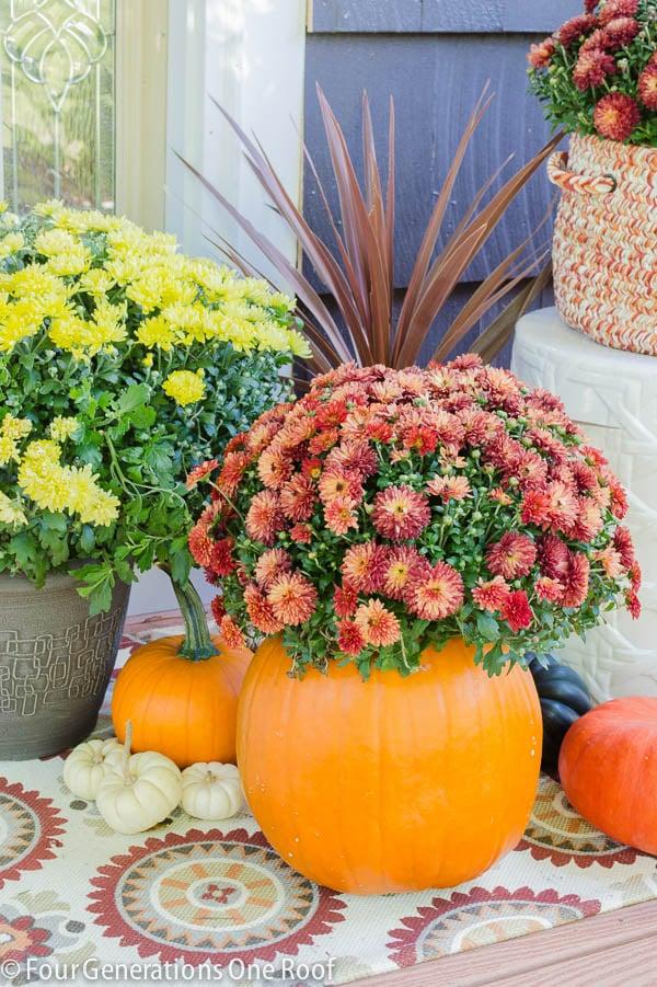 Diy fall pumpkin planter four generations one roof for Fall pumpkin decorating ideas