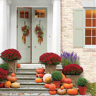 https://www.southernliving.com/home-garden/gardens/pumpkin-decorating
