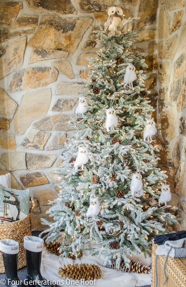 Our Frosted Fraser Fir Christmas Tree