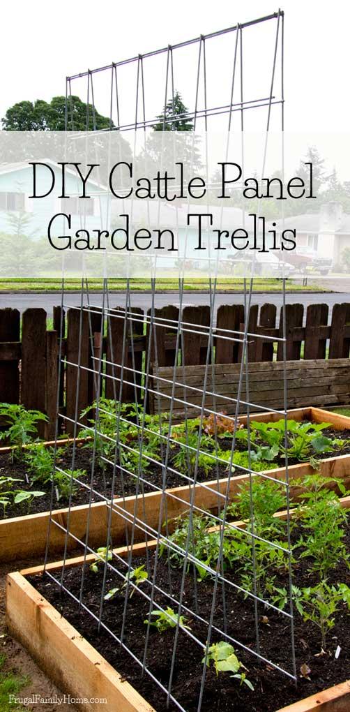 DIY-Cattle-Panel-Garden-Trellis