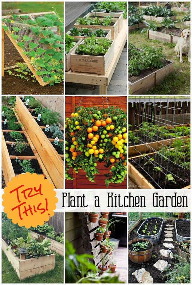 Try this archives four generations one roof for Kitchen garden designs