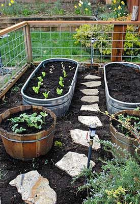 galvanized-tub-garden