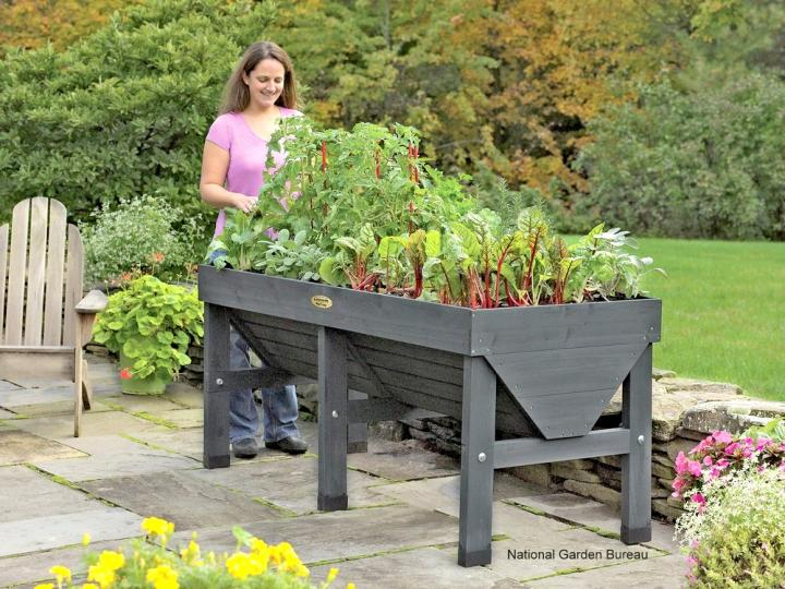 Grow a Vegetable Garden in containers raised gray wooden container for growing vegetables