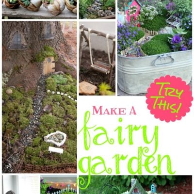 TRY THIS:  Make a Fairy Garden