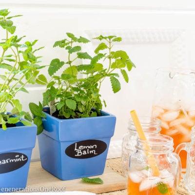 DIY Herb Planter {cobalt blue + tea}
