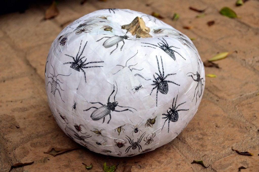 decoupaged-bug-pumpkin