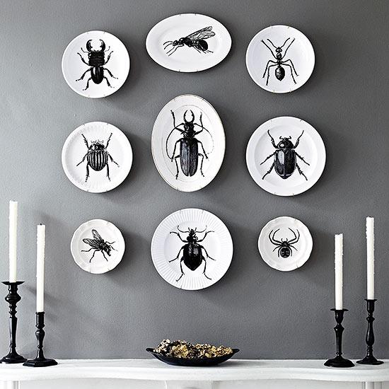 bug plates