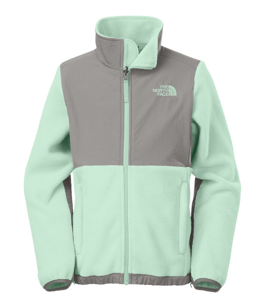 Teenage Girl Holiday Gift Guide 2015:northface womens denali jacket