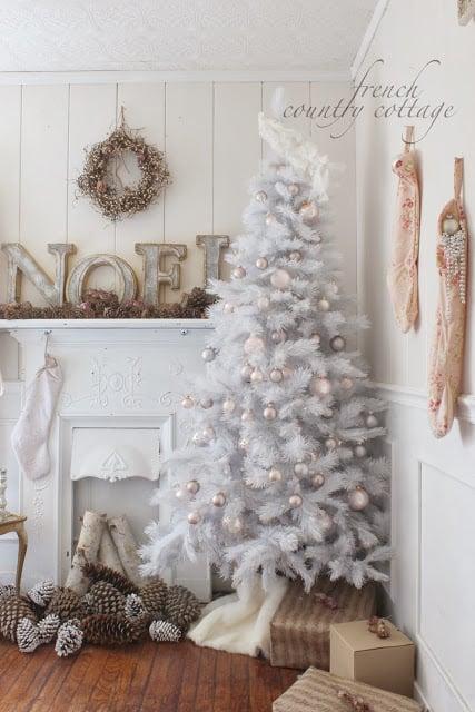 silver-white-tree