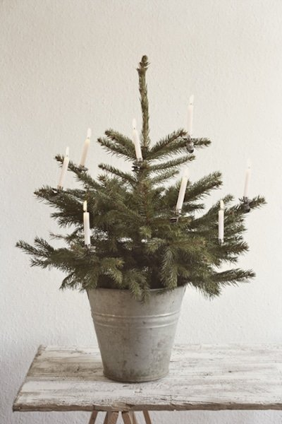 small-tree-candles
