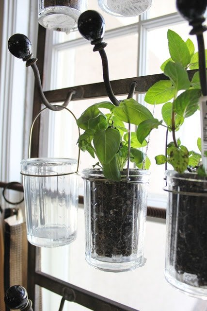 Herb Garden - Hanging Herb Garden by Itsy Bits and Pieces