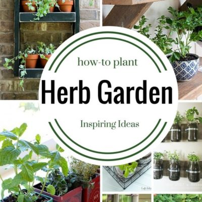 9 Herb Garden Ideas – How to Plant