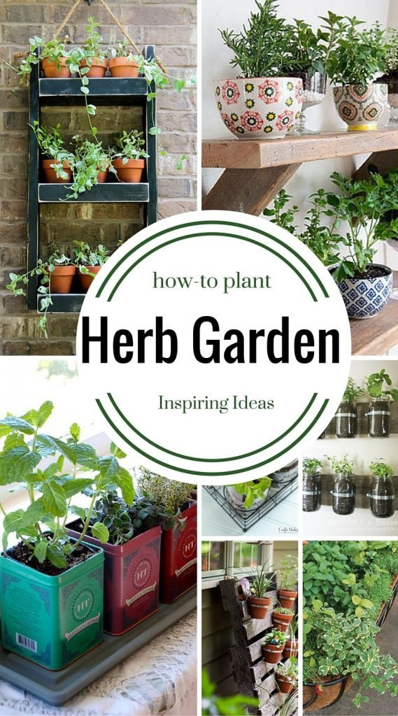 9 herb garden ideas how to plant four generations one roof for Kitchen garden plants