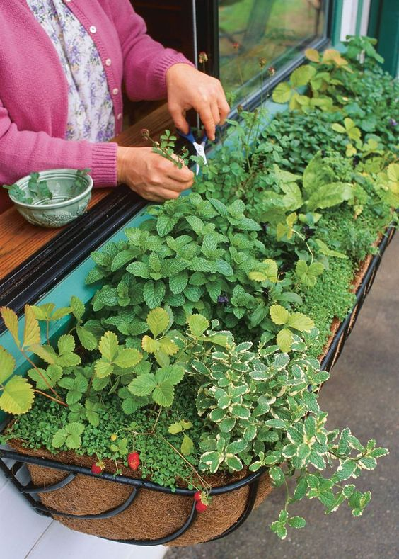 9 Herb Garden Ideas - How to Plant - Page 3 of 3 - Four Generations ...