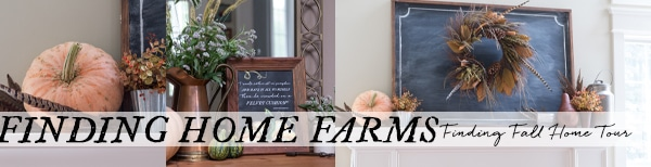 finding-home-farms