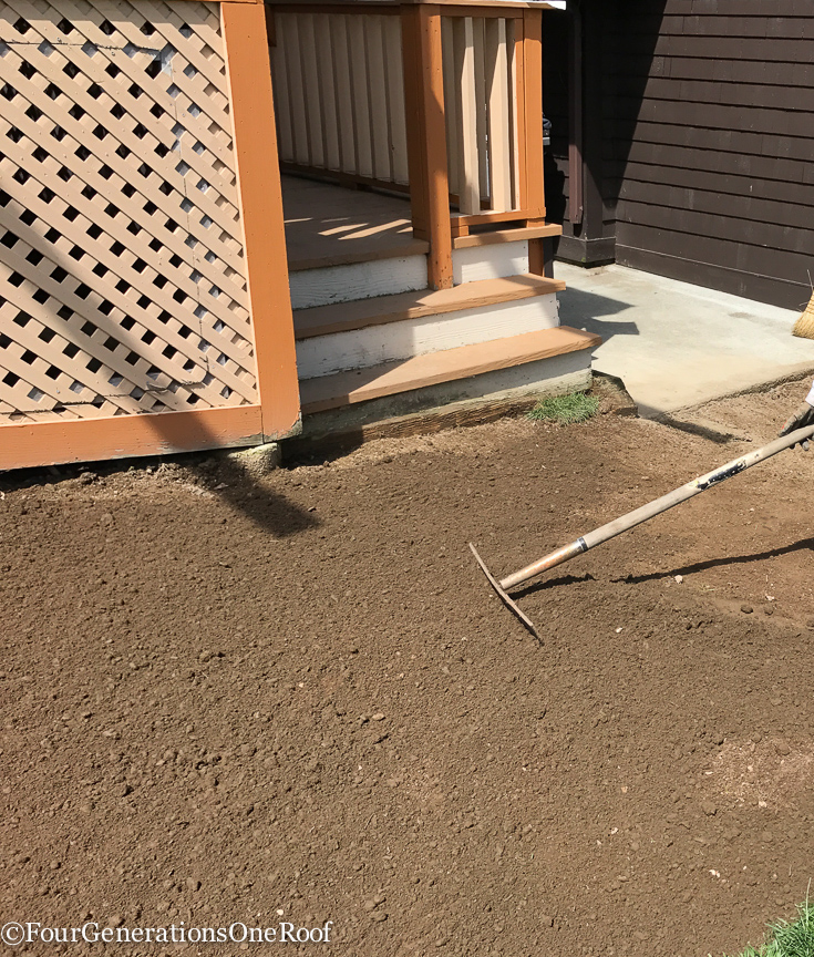 laying sod + digging up dog pee