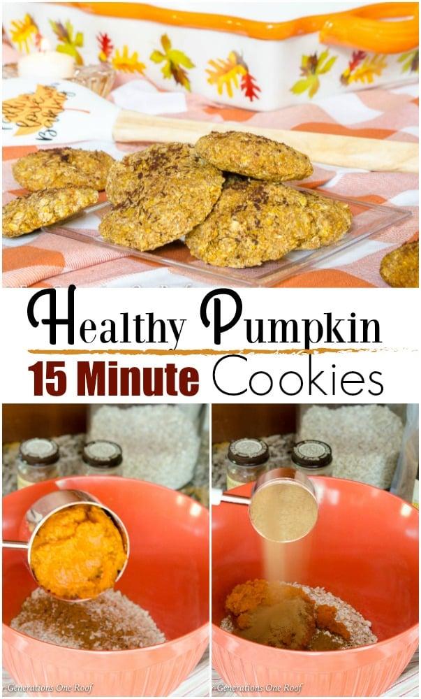 Quick Bake Pumpkin Oatmeal Brown Cookie Recipe | 15 Minute Coconut Sugar Pumpkin Oatmeal Cookie Recipe