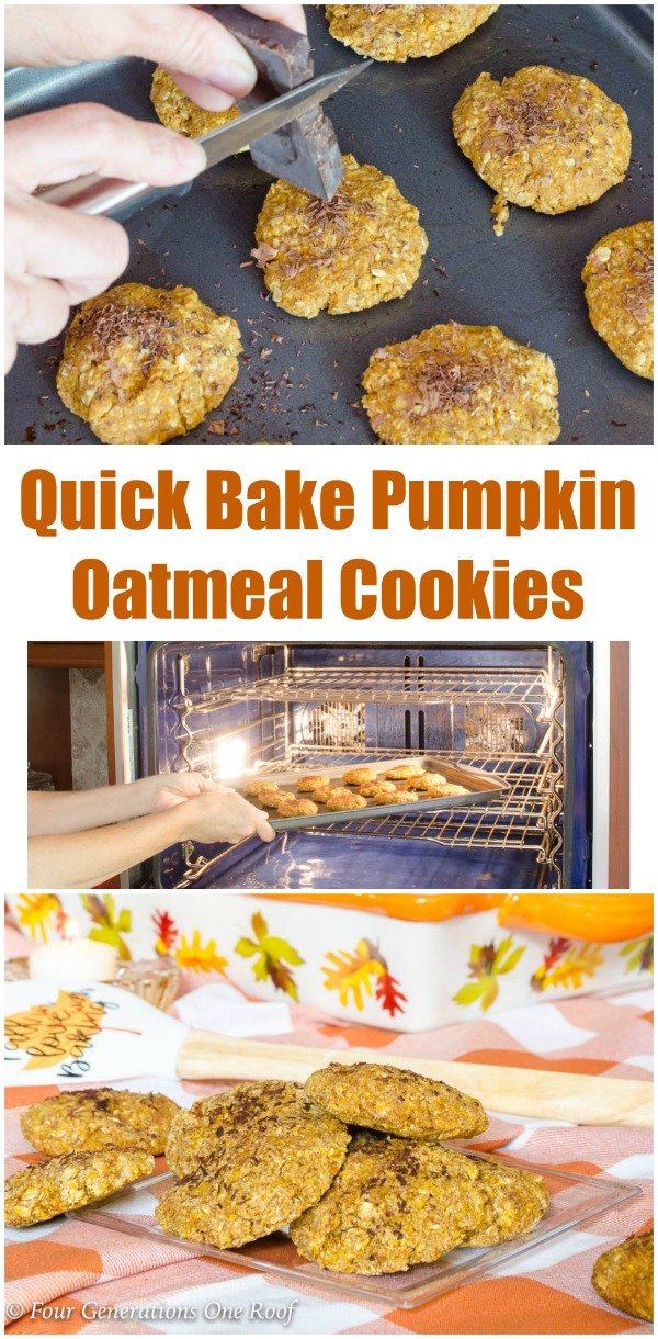 Quick Bake Pumpkin Oatmeal Cookies | 15 minute pumpkin cookies with oatmeal, coconut flour and coconut sugar. Slightly sweet and perfect for a healthy treat. #pumpkincookies #pumpkincookiesrecipe #pumpkinoatmeal #cookierecipe #healthycookiesrecipe #pumpkin #pumpkinbakingideas #cookieideas #healthybaking #healthycookiesoatmeal #healthycookiedough