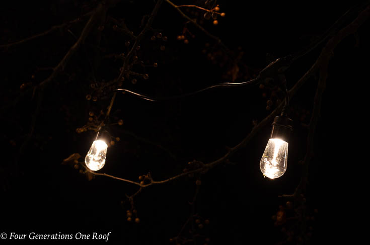 Enbrighten Seasons Color-Changing Café Lights - Easy Outdoor Christmas Lights with Big Impact