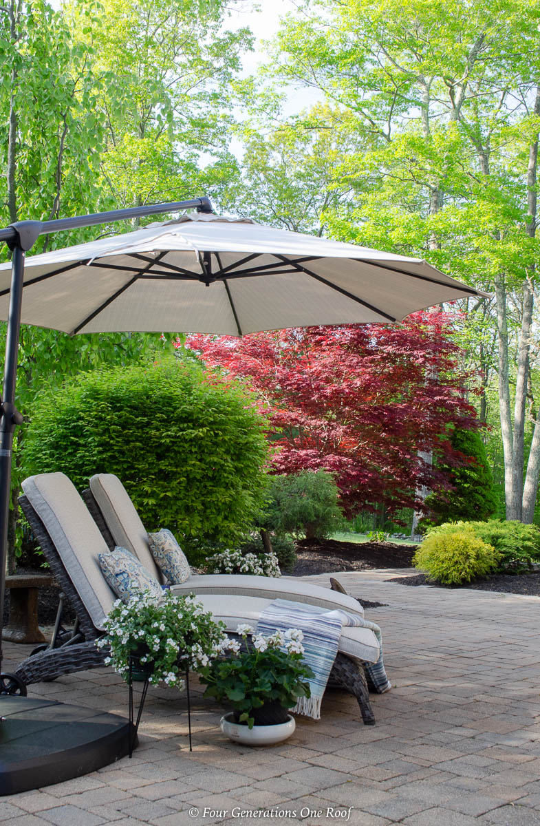 indoor outdoor living space with greenery, sand color umbrella, brown gray rattan outdoor chaise lounge chairs, pool house, blue striped throw blanket, white plants, green shrubs,paver patio, japanese maple