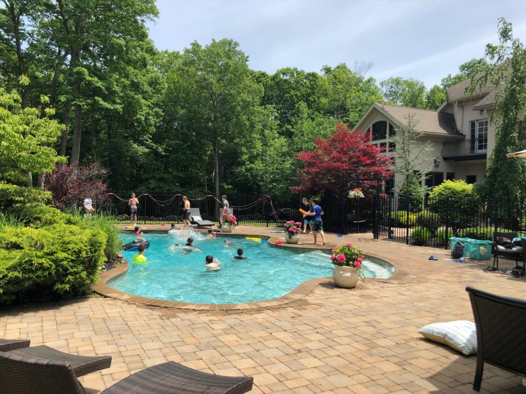 pool party VS Omni Variable speed pump kidney design pool, rock wall flower bed, paver patio, potted pink hydrangeas