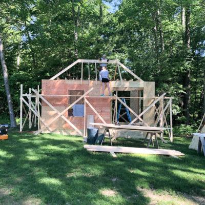 Our DIY Walk In Chicken Coop turned Chicken Mansion