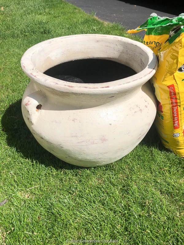 beige ceramic large planter pot, potting soil, green grass