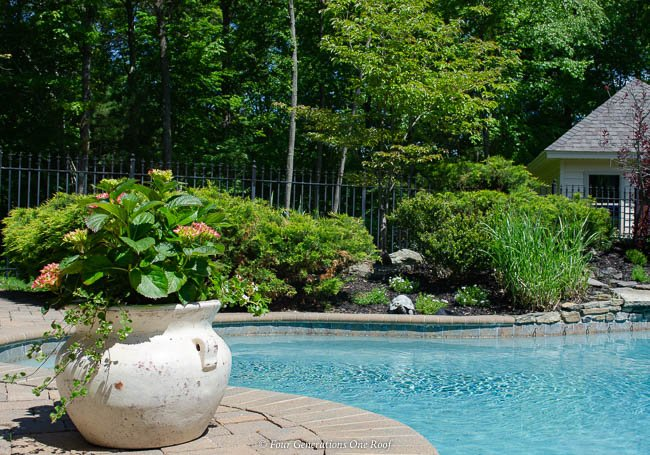 inground pool with rock garden and potted hydrangeas