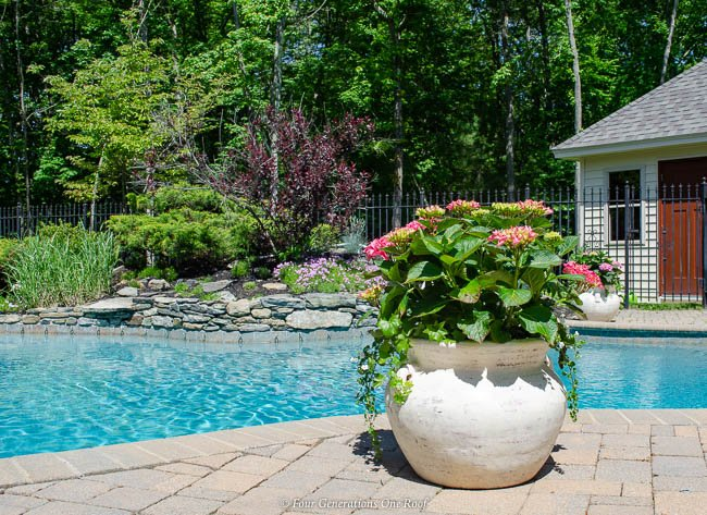 potted hydrangea bushes around a pool with flower bed -2