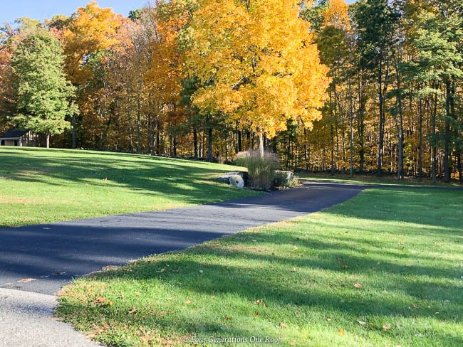 long driveway, fall colorful leaves in New England