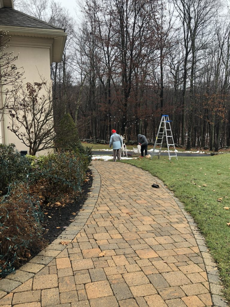brick walkway, outdoor christmas tree lights on shrubs