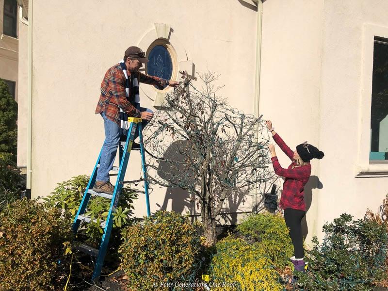 Jessica Bruno hanging Christmas Outdoor Christmas lights on shrubs