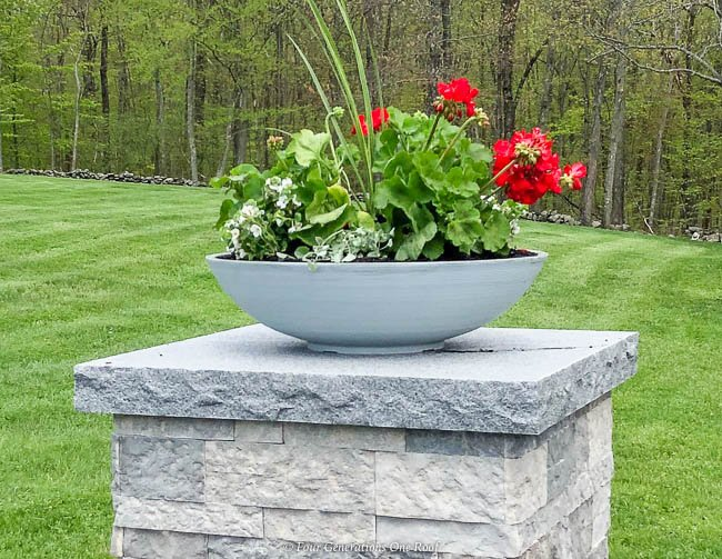 red geraniums in a charcoal bowl planter from Amazon