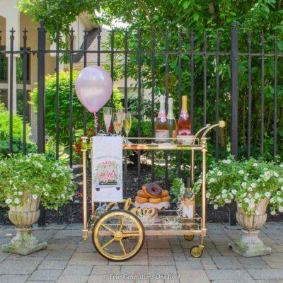 My Backyard Bridal Shower Ideas On a Budget