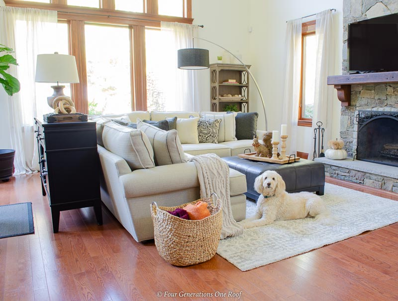 white goldendoodle in a living room laying on floor, white sectional, black ottoman, cathedral ceiling