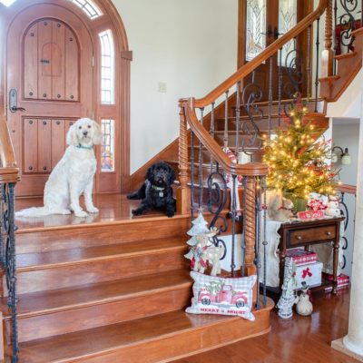 Our Cozy Christmas staircase nook with country creatures