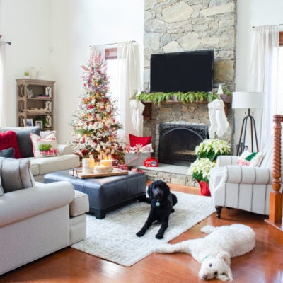 Goldendoodle approved red Christmas living room