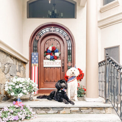 front door 4th of july with dogs